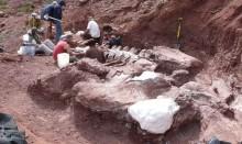 Fóssil gigantesco de titanossauro descoberto na Argentina é exemplar mais antigo da espécie