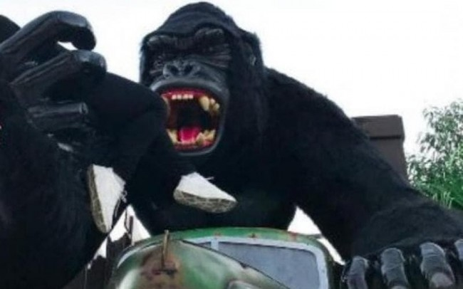 Estátua de gorila de onde o menino caiu no sábado, em foto não datada (CRÉDITO: REPRODUÇÃO/NSC)