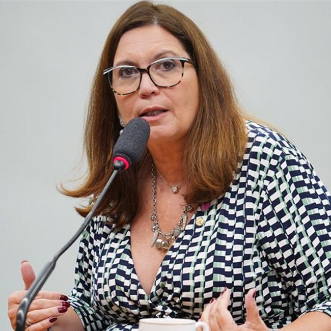 Procuradora e deputada em defesa da impressão do voto eletrônico (CRÉDITO: PABLO VALADARES/CÂMARA DOS DEPUTADOS)
