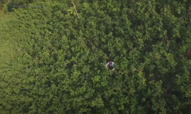 Trabalhador das fazendas de coca na Colômbia (CRÉDITO: REPRODUÇÃO/INTERNET)