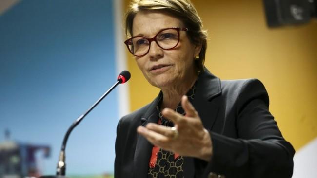 Ministra Tereza Cristina acompanha os acordos comerciais e projeções de perto (CRÉDITO: MARCELO CAMARGO/AGÊNCIA BRASIL)